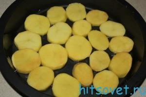 kartofel2
